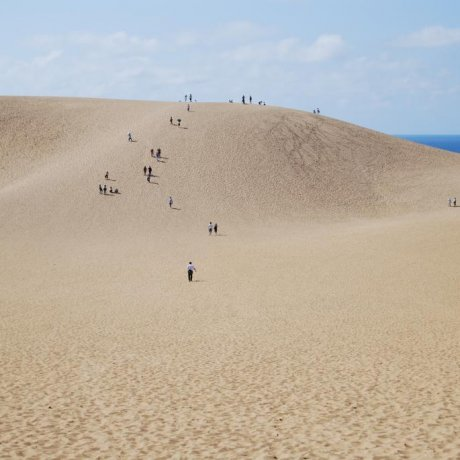 A Grain of Film History: Tottori Sand Dunes
