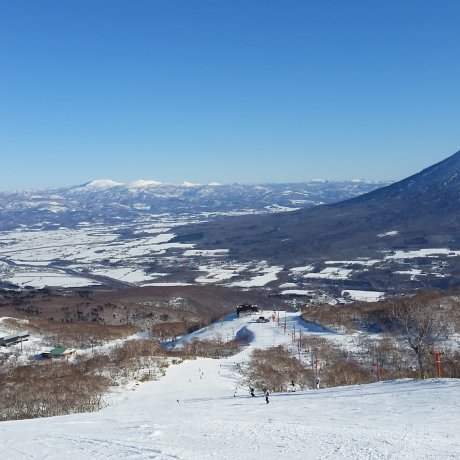 Working a Winter Season in Niseko