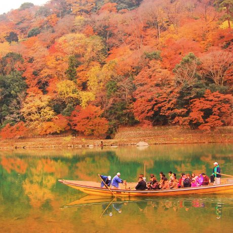 Autumn at Hozugawa River
